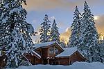 Log cabin home in winter forest, Dorrington, Calaveras County, California