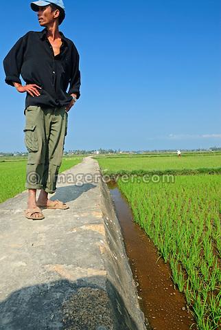 Asia, Vietnam, nr. Hoi An. Vietnamese man working in the rice fields near Hoi An.