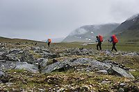 Group of hiker hiking along rocky trail through mountain landscape of Tjäktjavagge valley, near Sälka hut, Kungsleden trail, Lapland, Sweden