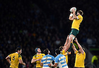 Ben McCalman of Australia wins the ball at a lineout. Rugby World Cup Semi Final between Argentina v Australia on October 25, 2015 at Twickenham Stadium in London, England. Photo by: Patrick Khachfe / Onside Images