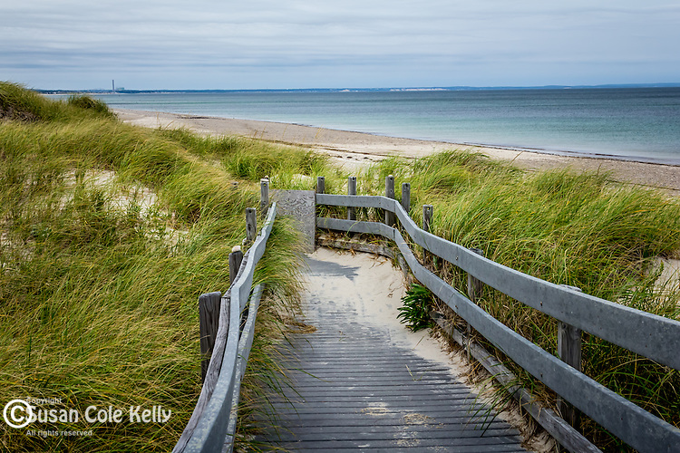 Sandy Neck preserve in Barnstable, Cape Cod, Massachusetts, USA