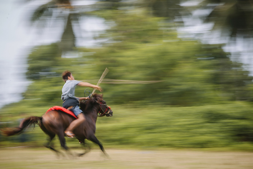 A Pasola warrior is throwing the spear at the enemy forces at the event in Waiha, Kodi. Pasola is an ancient tradition from the Indonesian island of Sumba. Categorized as both extreme traditional sport and ritual, Pasola is an annual mock horse warfare performed in response to the harvesting season. In the battelfield, the Pasola warriors use blunt spears as their weapon. However, fatal accident still do occurs.