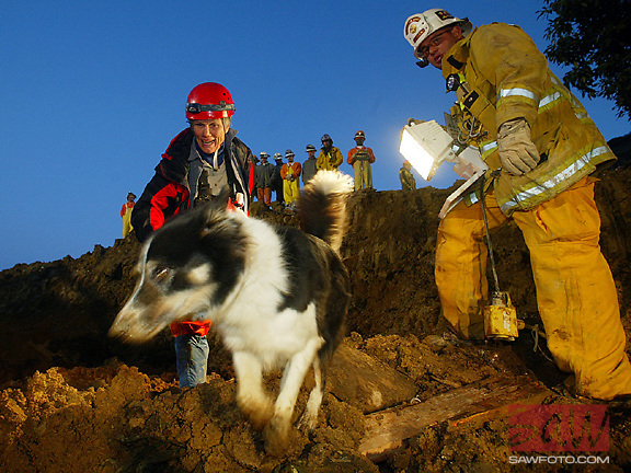 La Conchita, Ca--Rescue dog 'Flash Gordon' signals to TK that a possible victim is nearby. Rescue personel, working 24 hours a day overnight search Wednesday morning before dawn, searching for victims possibly alive. Hundreds of  County and State emergency crews have worked without rest to find any possible victims still alive, 13 are still missing.
