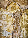 Weathered wallpaper, ruins of the ghost town of Cortez, Lander County, Nevada