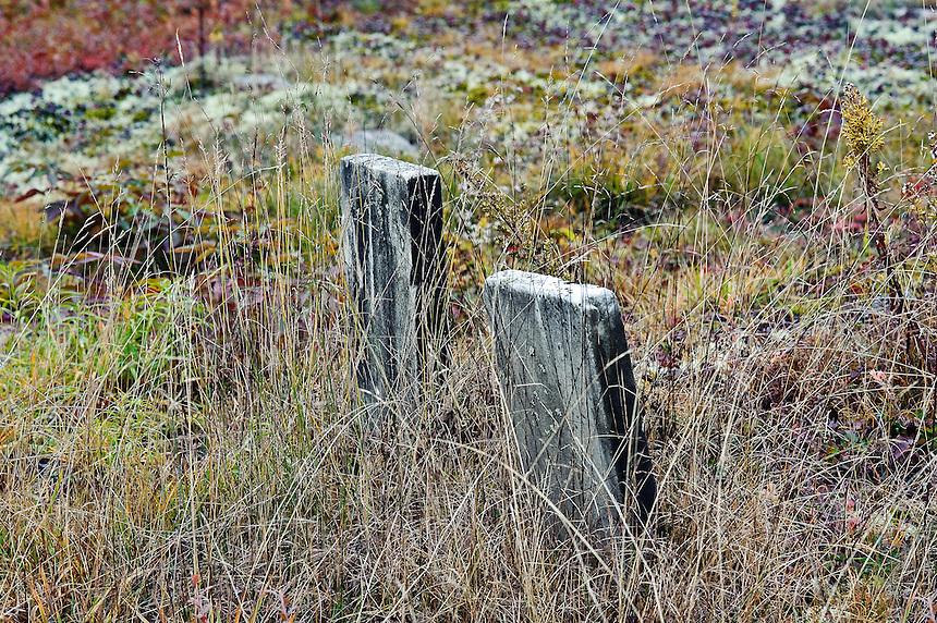 Ancient gravestones.