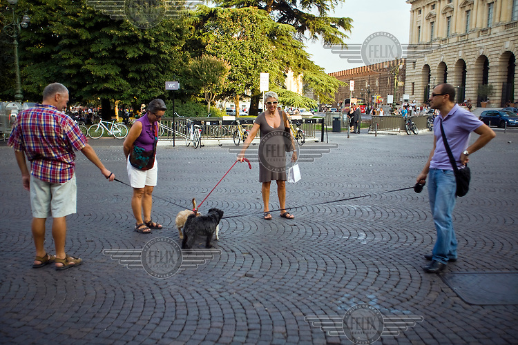 Four dog walkers stop and talk as their dogs leads become entwined in the Piazza Bra in Verona, Italy...