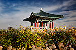 Korean Friendship Bell with yellow lillies