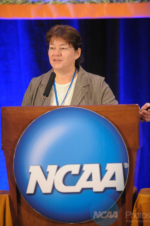 13 JAN 2008:  Staff and delegates participated in the Division I Issues Forum at the 2008 NCAA Convention held at the Gaylord Palms Opryland Resort and Convention Center in Nashville, TN. Stephen Nowland/NCAA Photos.Pictured: Mary Wilfert - NCAA.....
