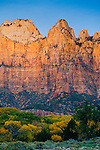 Sunrise light on the Towers of the Virgin, Zion Canyon, Zion National Park, Utah