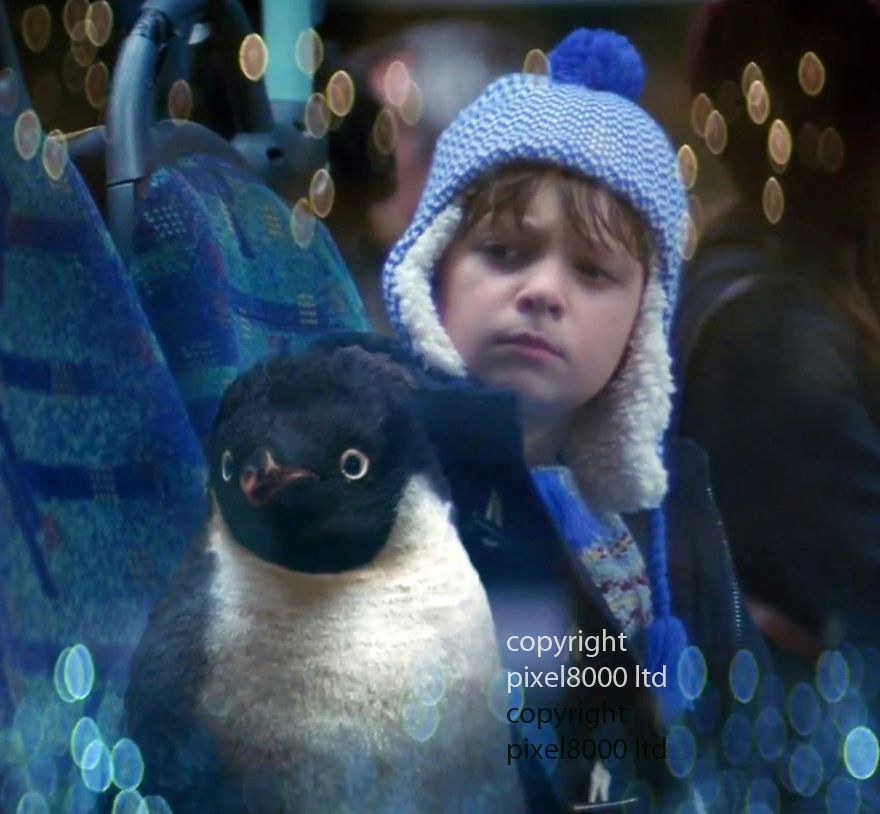 John Lewis Advert Xmas 2014<br /> Stars little boy named &quot;Sam&quot; and &quot;Monty The Penguin&quot;<br /> <br /> Monty sees a black and white film showing romance. He starts to pine for a mate<br /> <br /> <br /> <br /> <br /> Pic supplied by Pixel 8000 Ltd