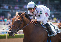 ARCADIA, CA - JUNE 24: Battle of Midway #2, ridden by Flavien Prat win the Affirmed Stakes at Santa Anita Park on June 24, 2017 in Arcadia, California.  (Photo by Zoe Metz/Eclipse Sportswire/Getty Images)