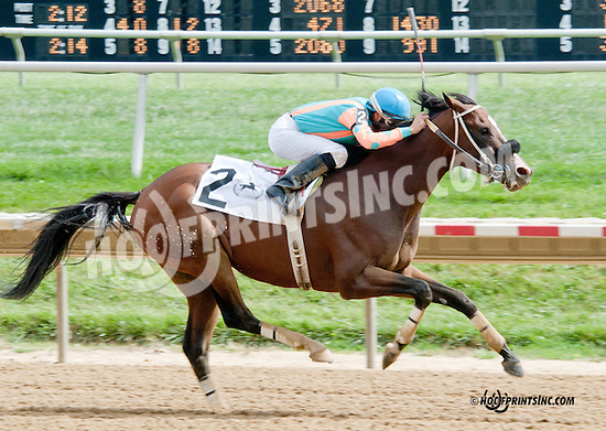 Modern Cowboy winning at Delaware Park on 9/14/13
