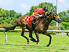 King Gatto winning at Delaware Park on 7/10/17