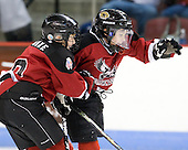 "A pair of mites celebrate a goal.  Both period breaks featured ""mites on ice"". - The visiting Merrimack College Warriors tied the Boston University Terriers 1-1 on Friday, November 12, 2010, at Agganis Arena in Boston, Massachusetts."