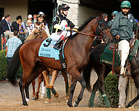 """October 07, 2018 : #9 Shazier and jockey Joe Bravo before running in the 28th running of The Dixiana Bourbon (Grade 3) $250,000 """"Win and You're In Breeders' Cup Juvenile Turf Division"""" at Keeneland Race Course on October 07, 2018 in Lexington, KY.  Candice Chavez/ESW/CSM"""