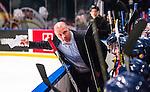 Stockholm 2014-08-21 Ishockey CHL Djurg&aring;rdens IF - Fribourg-Gotteron  :  <br /> Djurg&aring;rdens assisterande tr&auml;nare Stefan Nyman gestikulerar<br /> (Foto: Kenta J&ouml;nsson) Nyckelord:  Djurg&aring;rden Hockey Hovet CHL Fribourg Gotteron tr&auml;nare manager coach portr&auml;tt portrait