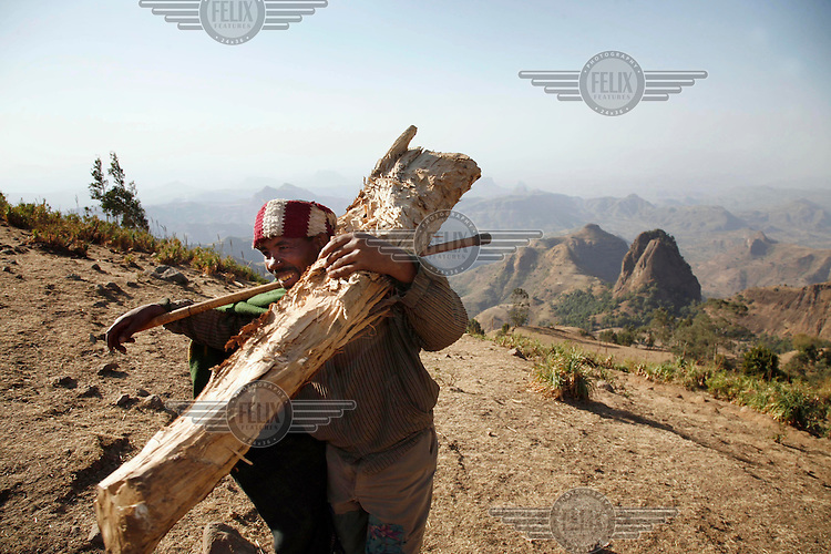 A man with firewood collected from the hills of the Megech area, where deforestation and soil erosion are a conitinuing problem. IFAD (International Fund for Agricultural Development) are currently involved in the Lake Tana Watershed project, which focuses on mitigating and adapting to climate change.