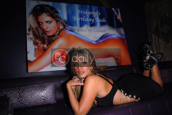 Bridgetta Tomarchio<br /> at Bridgetta Tomarchio's Birthday Bash and Babes in Toyland 3rd Annual Charity Event, Bar 210, Beverly Hills, CA. 12-03-10<br /> David Edwards/DailyCeleb.com 818-249-4998