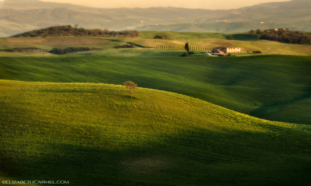 Tuscan Light