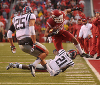 NWA Media/Michael Woods --11/22/2014-- w @NWAMICHAELW...University of Arkansas running back Jonathan Williams is knocked out of bounds in the 2nd quarter of Arkansas 30-0 win over Ole Miss during Saturdays game at Razorback Stadium.