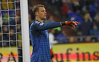 Torwart Manuel Neuer (Deutschland Germany) - 19.11.2018: Deutschland vs. Niederlande, 6. Spieltag UEFA Nations League Gruppe A, DISCLAIMER: DFB regulations prohibit any use of photographs as image sequences and/or quasi-video.
