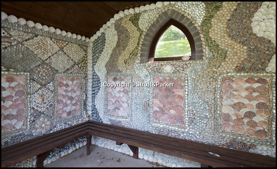 BNPS.co.uk (01202 558833)<br /> Pic: Strutt&Parker/BNPS<br /> <br /> Shell grotto.<br /> <br /> Every man's home is his castle - but one lucky buyer could get their hands on this modern fortress complete with tower and fire-breathing dragon for a whopping £4 million.<br /> <br /> From the outside Castell Gyrn, which sits in the rolling countryside in Denbighshire, North Wales, looks the part of a 200-year-old citadel, but it is actually one of the country's youngest castles at just 39 years old.<br /> <br /> Unlike its ancient counterparts, the contemporary stronghold comes complete with draught exclusion, underfloor heating and double glazing.<br /> <br /> It also has the modern comforts of a cinema room, a library and a butler's pantry, as well as permission to add an extension for leisure facilities including an infinity swimming pool.