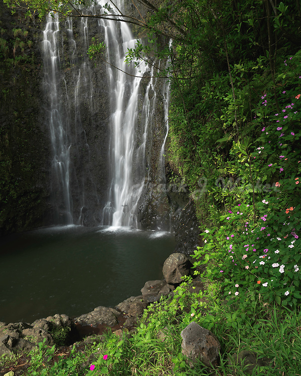 Beautiful Wailua Falls along the road to Hana on  Maui in Hawaii