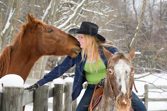 Mounted woman horseback riding visits with a friendly yearling horse over a fence, winter with snow on tree limbs background, attractive blonde in western apparel with black cowboy hat, Pennsylvania, PA, USA.