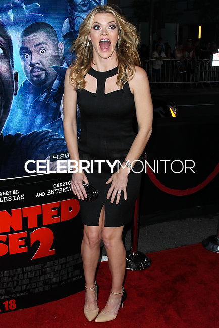 """LOS ANGELES, CA, USA - APRIL 16: Missi Pyle at the Los Angeles Premiere Of Open Road Films' """"A Haunted House 2"""" held at Regal Cinemas L.A. Live on April 16, 2014 in Los Angeles, California, United States. (Photo by Xavier Collin/Celebrity Monitor)"""