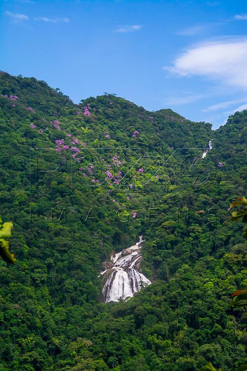 Cachoeira do Elefante. Parque Estadual da Serra do Mar - Núcleo Itutinga Pilões, Biritiba Mirim - SP, 01/2017.