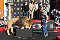 HOLLYWOOD, CA - JANUARY 22: Leo the Lion, Alwyn Hight Kushner, Gary Barber, Sylvester Stallone at the Metro-Goldwyn-Mayer 90th Anniversary Celebration held at the TCL Chinese Theatre on January 22, 2014 in Hollywood, California. (Photo by Xavier Collin/Celebrity Monitor)