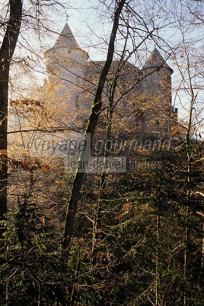 Europe/France/Auverne/63/Puy-de-Dôme/Env. de Courpière: Le château d'Aulteribe