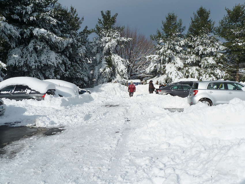 The Cleanup Begins   Winter Storm 12 January 2011 in Hamden CT. Scenes of Our Front Yard and Parking Lot