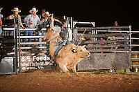 SEBRA - Danville, VA - 8.23.2014 - Bulls & Action