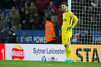 Hugo Lloris of Tottenham after Leicester City go 2-0 in front through Riyad Mahrez's effort during the Premier League match between Leicester City and Tottenham Hotspur at the King Power Stadium, Leicester, England on 28 November 2017. Photo by James Williamson / PRiME Media Images.