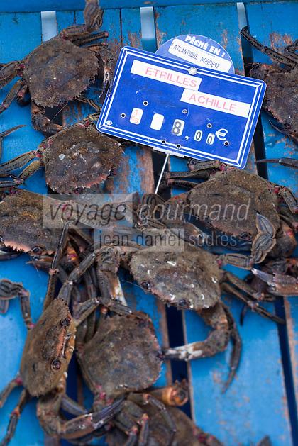 Europe/France/Bretagne/56/Morbihan/Belle-Ile/Le Palais: Détail des étals des femmes des pêcheurs qui vendent la marée du jour:- Etrilles