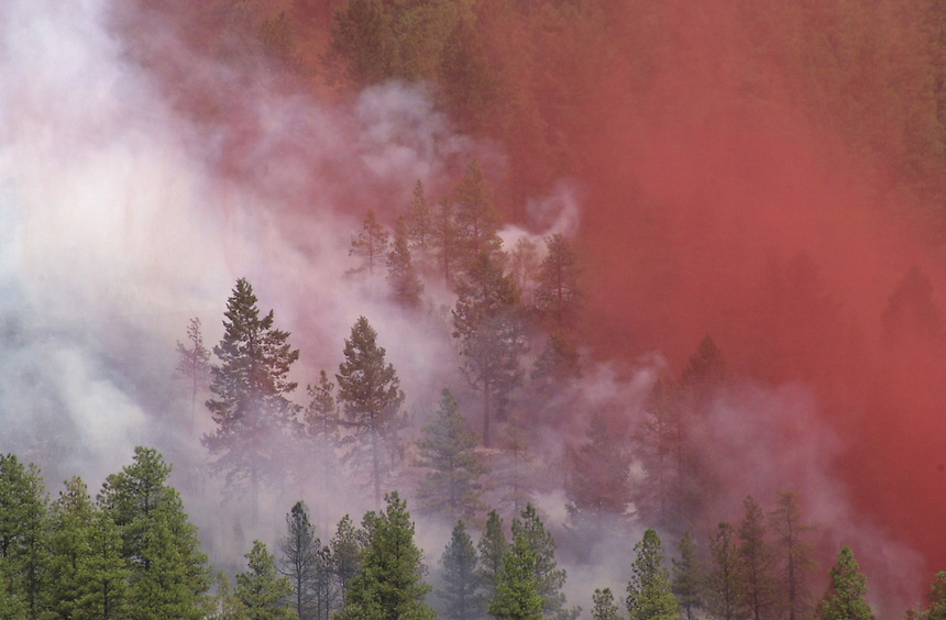 A mixture of slurry fire retardant and smoke hangs in the trees near the location where the 2002 Missionary Ridge Fire started north of Durango, Colorado in June 2002.