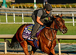 October 26, 2019 : Breeders' Cup Juvenile Fillies entrant Bast, trained by Bob Baffert, exercises in preparation for the Breeders' Cup World Championships at Santa Anita Park in Arcadia, California on October 26, 2019. Scott Serio/Eclipse Sportswire/Breeders' Cup/CSM