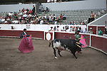 Toreador and Matador weaken bull<br />