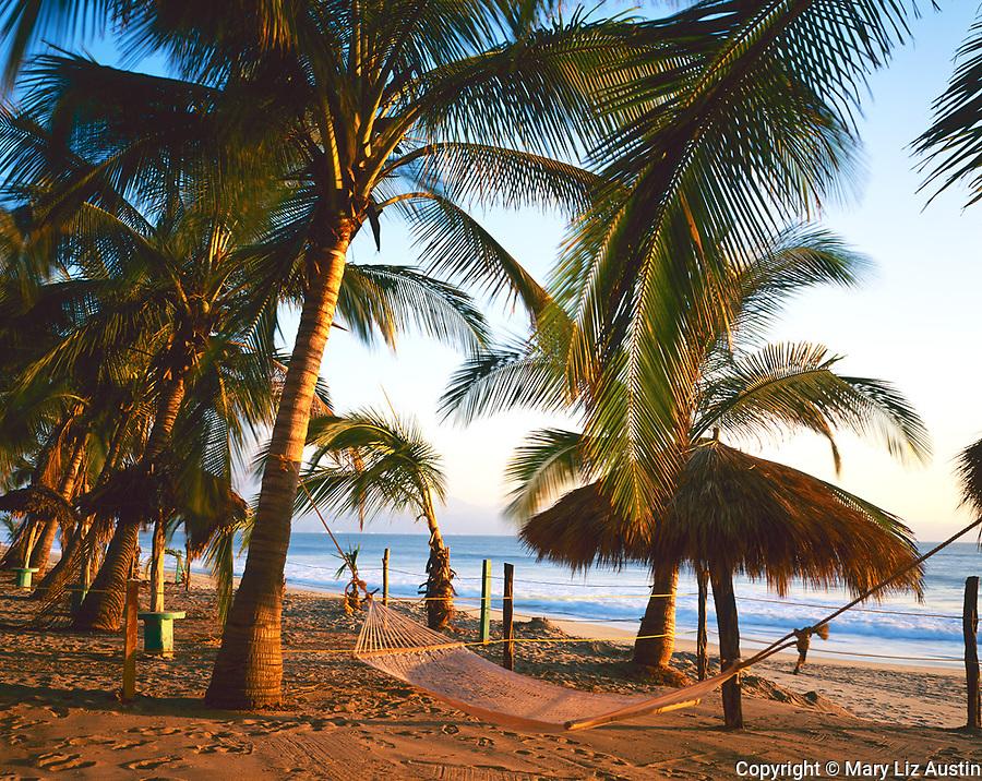 Nayarit, Mexico<br /> Sunset light on coconut palms (Cocos nucifera) and hammock on the beach of Bahia de Banderas (Banderas Bay) near the village of Bucerias
