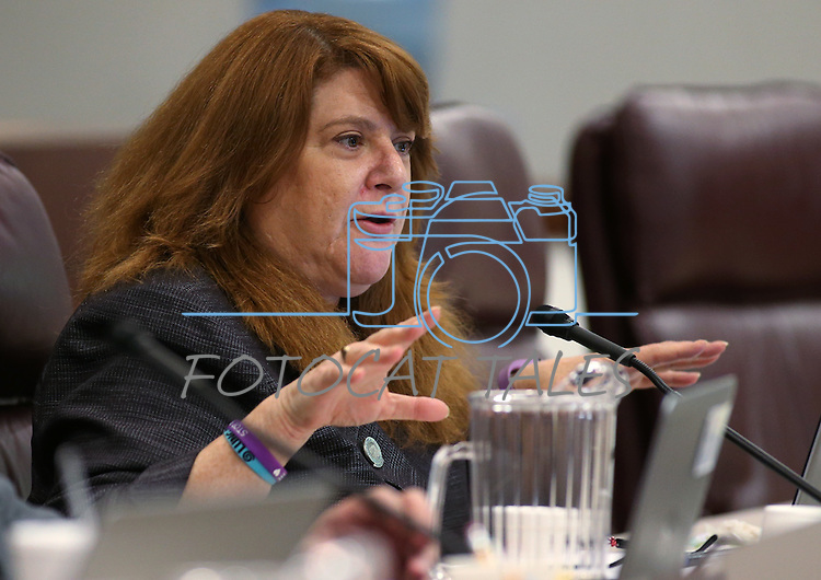 Nevada Assemblywoman Ellen Spiegel, D-Henderson, works in committee at the Legislative Building, in Carson City, Nev., on Thursday, Feb. 19, 2015. <br /> Photo by Cathleen Allison
