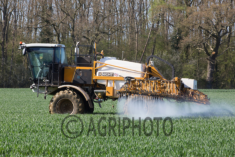 Spraying fungicide on Winter Wheat<br /> Picture Tim Scrivener 07850 303986 <br /> scrivphoto@btinternet.com<br /> &hellip;.covering agriculture in the UK&hellip;.