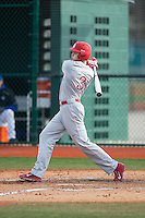 Jamie Smith (3) of the Cornell Big Red follows through on his swing against the Seton Hall Pirates at The Ripken Experience on February 27, 2015 in Myrtle Beach, South Carolina.  The Pirates defeated the Big Red 3-0.  (Brian Westerholt/Four Seam Images)