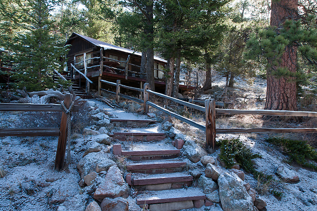 cabin amid ponderosa pines near the East Fork of Fish Creek, Estes Park, Rocky Mountains, Colorado, USA