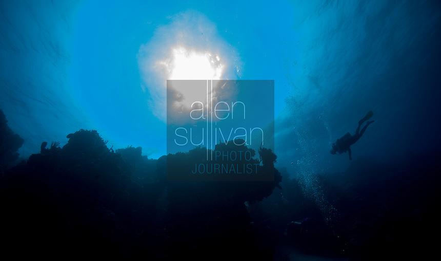 Scuba diver, coral and sun; West End, Roatan, Honduras