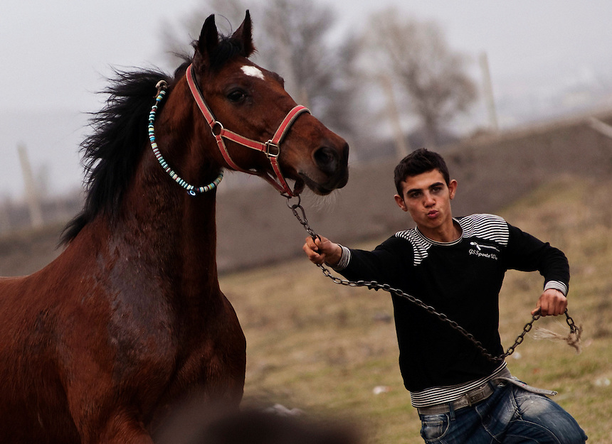 Young gypsy boy showing his horse during the Horse Easter gypsy gathering near the village of Mogila, Stara Zagora area. By tradition, the first week of the Long Lent is called Theodor's week in Bulgaria. St. Theodor's Day also known as Horse Easter is celebrated with Horse competitions and horse races testing the animals' strength. The fastest and best looking horse is decorated with wreaths and is the first one to head to the village, where a lass or a newly-wed woman meets the winner.