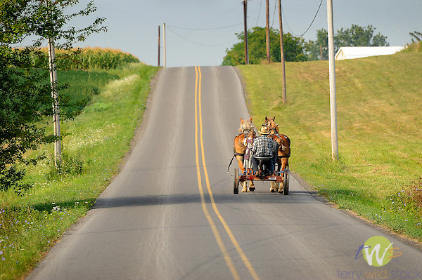 Mennonite man and daughter on country road with horse drawn cart.