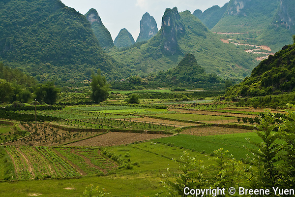 Karst Limestone Mountains serve as a backdrop for Guilin Farmland, near Li River, China, May 2007