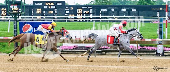 Sweet Honey AA winning at Delaware Park on 6/16/16