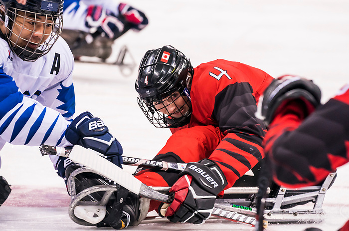 PyeongChang 15/3/2018 - James Dunn (#4), of Wallacetown, ON, in action as Canada takes on Korea in semifinal hockey action at the Gangneung Hockey Centre during the 2018 Winter Paralympic Games in Pyeongchang, Korea. Photo: Dave Holland/Canadian Paralympic Committee
